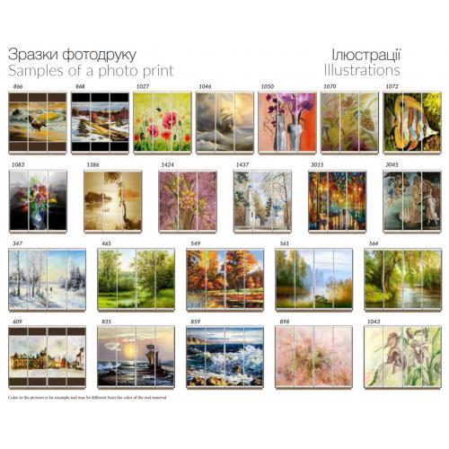 Фасады фотопечать Иллюстрации (3 и 4 двери)