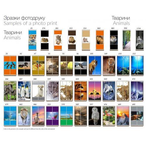 Фасады фотопечать Животные (1 и 2 двери)