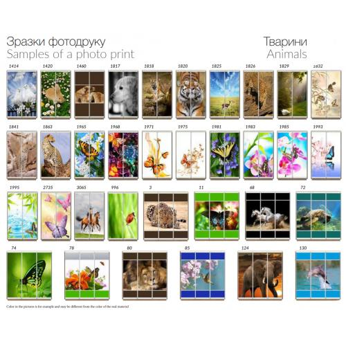 Фасады фотопечать Животные (2 и 3 двери)