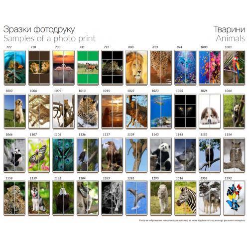 Фасады фотопечать Животные (2 двери)