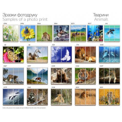 Фасады фотопечать Животные (3 и 4 двери)